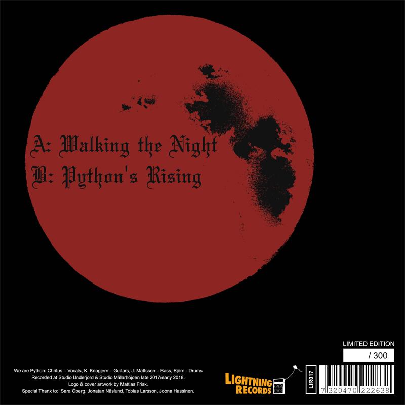 LIR017 Python – Walking The Night